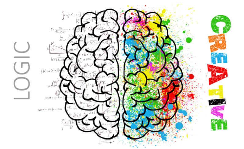 Kreative und logische Gehirnhälfte